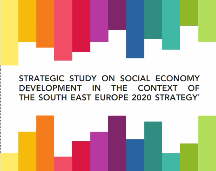 Strategic study on Social Economy Development